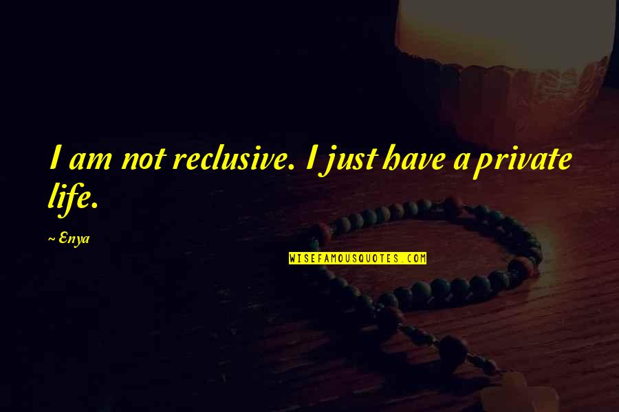 Falling For You Too Fast Quotes By Enya: I am not reclusive. I just have a