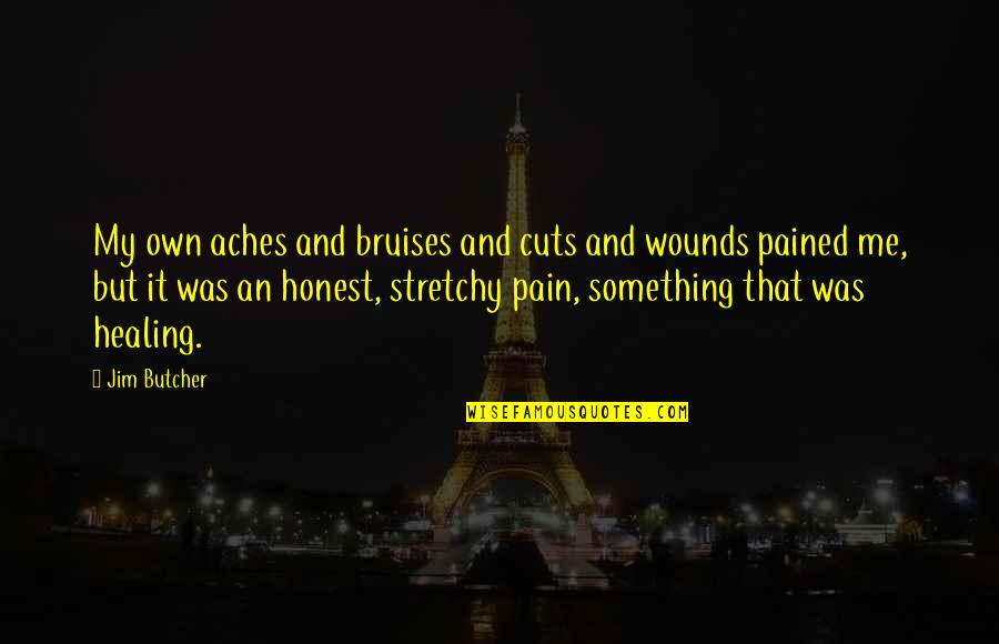 Falling Head Over Heels Quotes By Jim Butcher: My own aches and bruises and cuts and