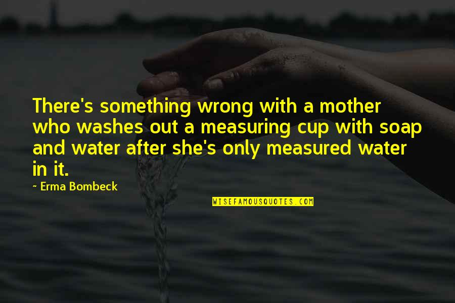 Fallout 3 Bobbleheads Quotes By Erma Bombeck: There's something wrong with a mother who washes