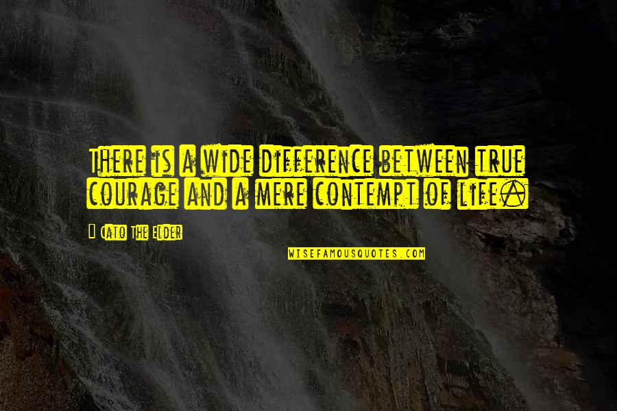 Fallout Think Tank Quotes By Cato The Elder: There is a wide difference between true courage