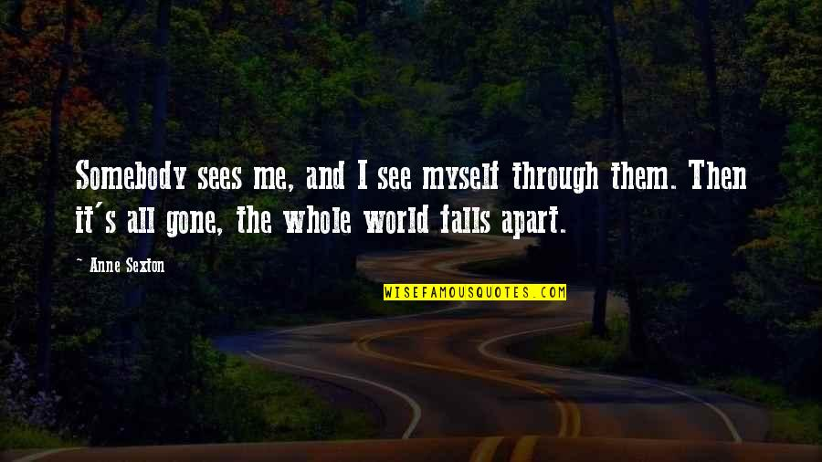 Falls Apart Quotes By Anne Sexton: Somebody sees me, and I see myself through