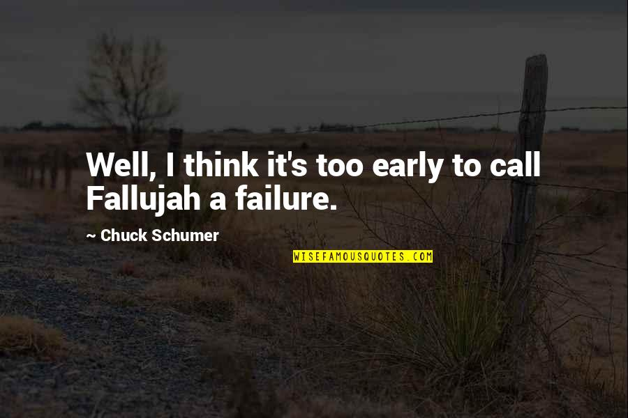 Fallujah Quotes By Chuck Schumer: Well, I think it's too early to call