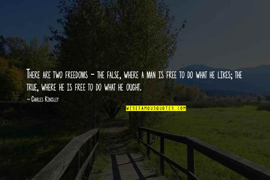 False Man Quotes By Charles Kingsley: There are two freedoms - the false, where