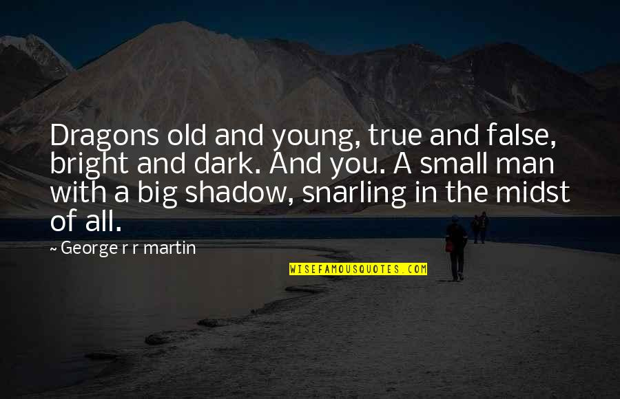 False Man Quotes By George R R Martin: Dragons old and young, true and false, bright