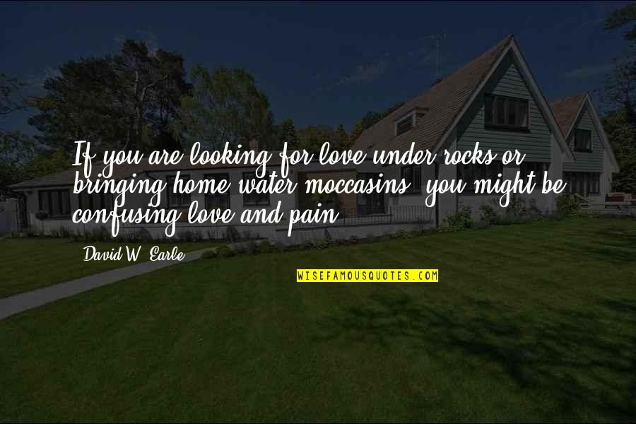 Families And Love Quotes By David W. Earle: If you are looking for love under rocks