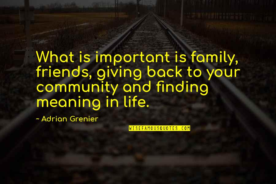 Family And Friends Life Quotes By Adrian Grenier: What is important is family, friends, giving back