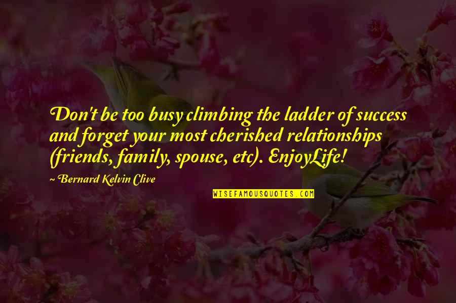 Family And Friends Life Quotes By Bernard Kelvin Clive: Don't be too busy climbing the ladder of