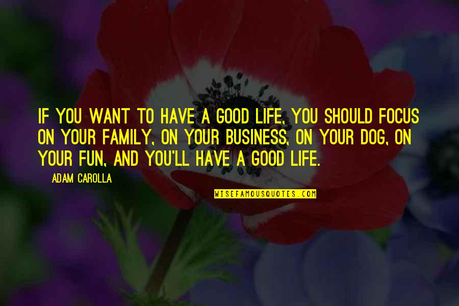 Family And Life Quotes By Adam Carolla: If you want to have a good life,