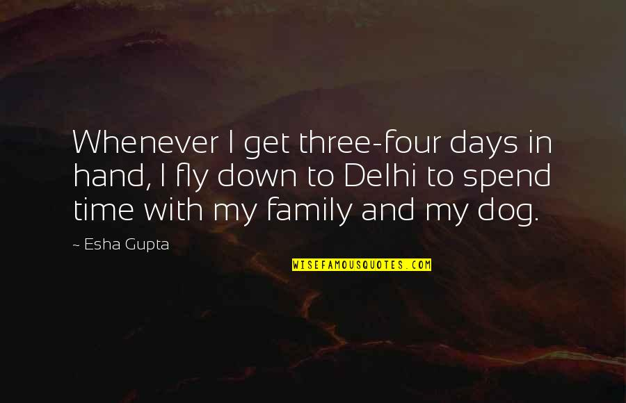 Family And Time Quotes By Esha Gupta: Whenever I get three-four days in hand, I