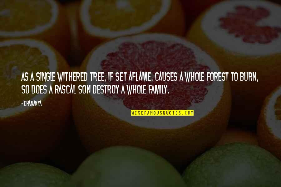 Family And Tree Quotes By Chanakya: As a single withered tree, if set aflame,