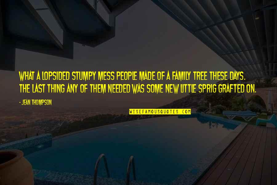 Family And Tree Quotes By Jean Thompson: What a lopsided stumpy mess people made of