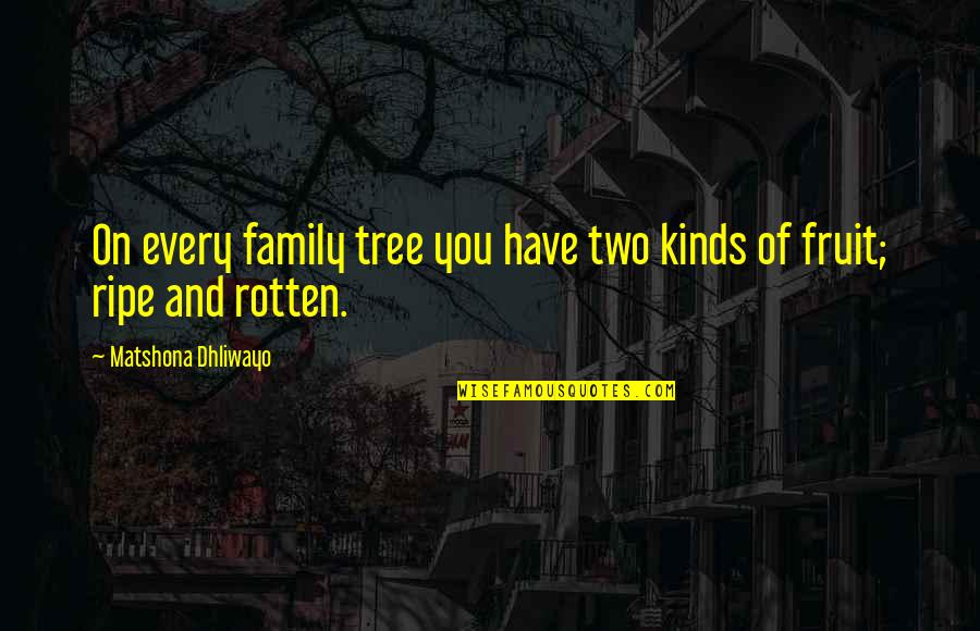 Family And Tree Quotes By Matshona Dhliwayo: On every family tree you have two kinds