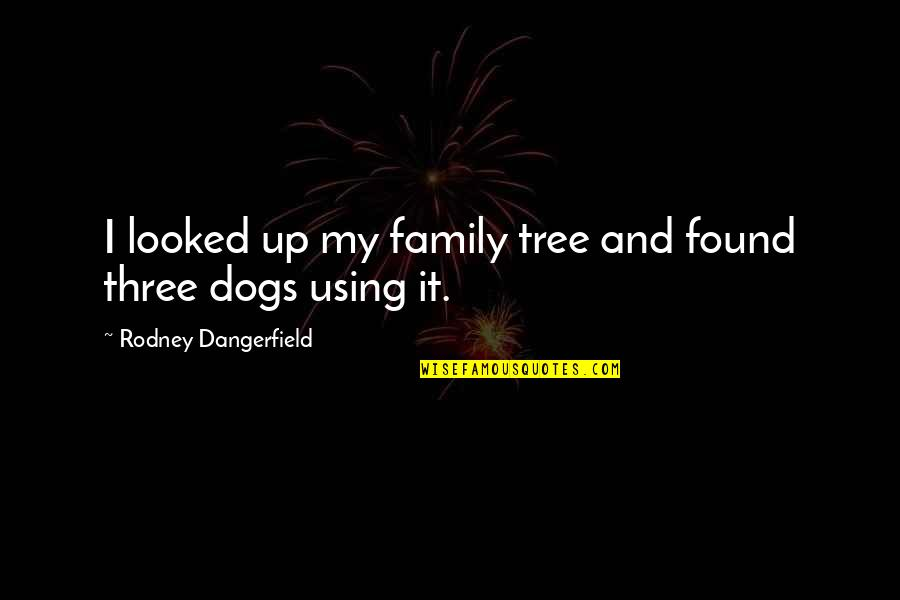 Family And Tree Quotes By Rodney Dangerfield: I looked up my family tree and found