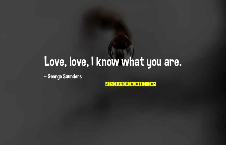 Famous Berserk Quotes By George Saunders: Love, love, I know what you are.