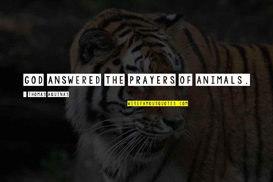 Famous Cristina Yang Quotes By Thomas Aquinas: God answered the prayers of animals.