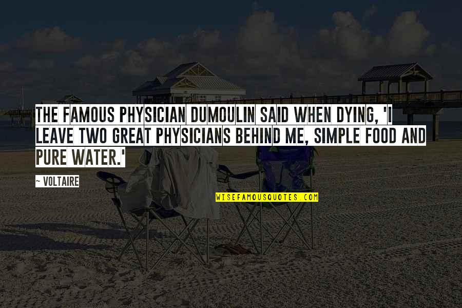 Famous Food Quotes By Voltaire: The famous physician Dumoulin said when dying, 'I