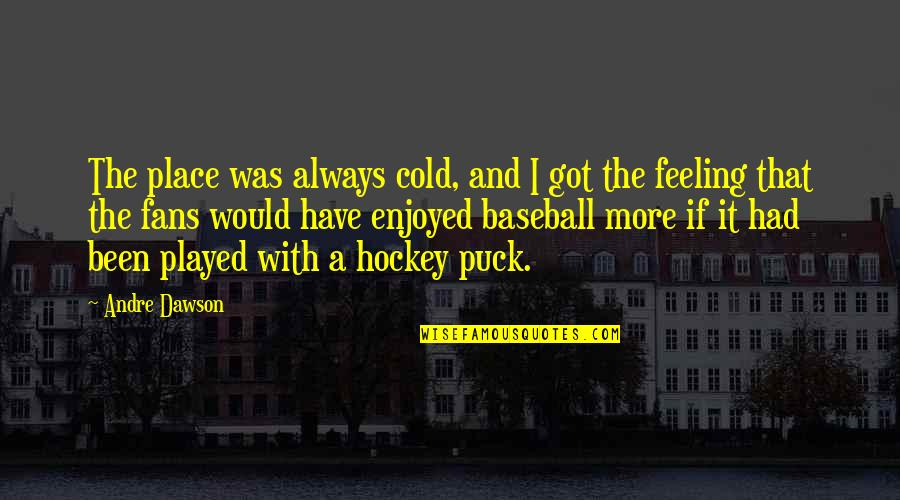 Famous Funny Kid Movie Quotes By Andre Dawson: The place was always cold, and I got