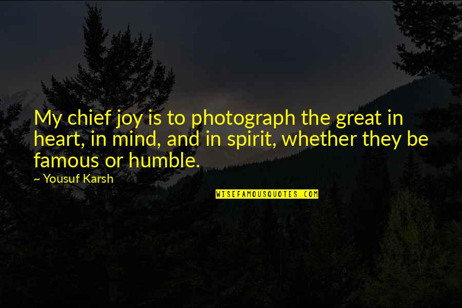 Famous Heart Vs Mind Quotes By Yousuf Karsh: My chief joy is to photograph the great