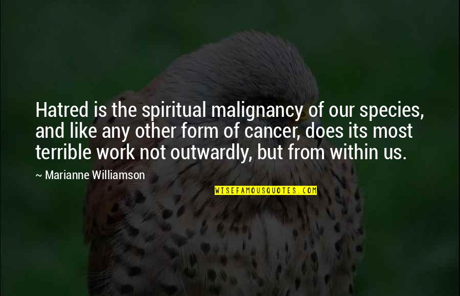 Famous Hermione Quotes By Marianne Williamson: Hatred is the spiritual malignancy of our species,