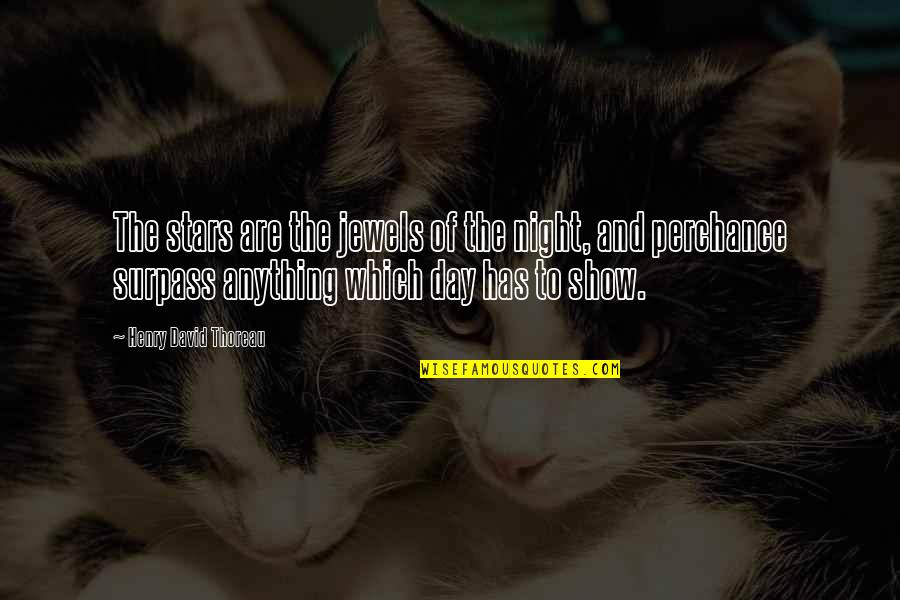 Famous Jockeys Quotes By Henry David Thoreau: The stars are the jewels of the night,