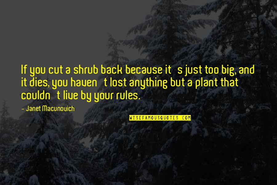 Famous Joey Barton Quotes By Janet Macunovich: If you cut a shrub back because it's