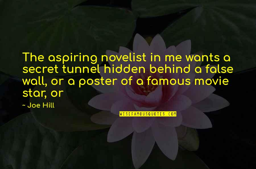 Famous Off The Wall Quotes By Joe Hill: The aspiring novelist in me wants a secret