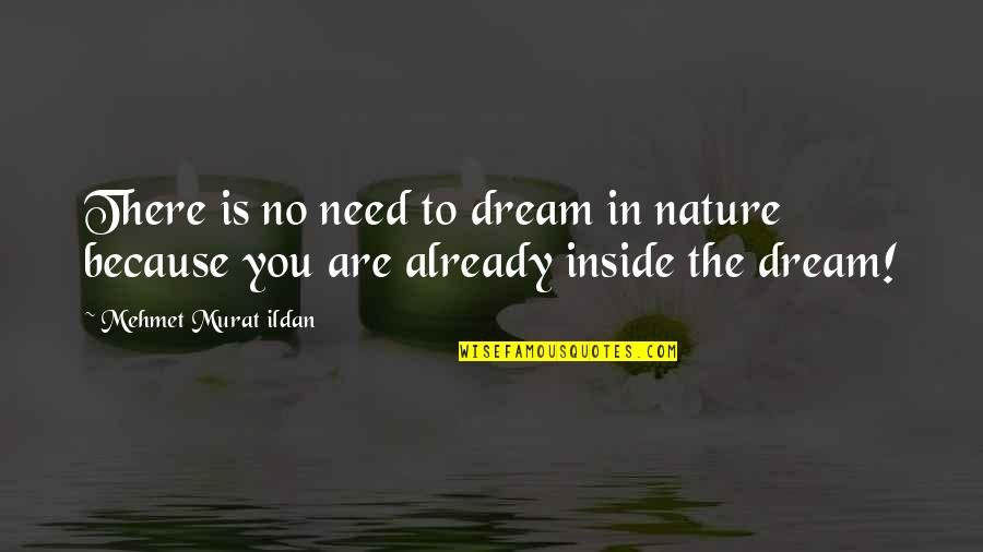 Famous Sayings Quotes By Mehmet Murat Ildan: There is no need to dream in nature