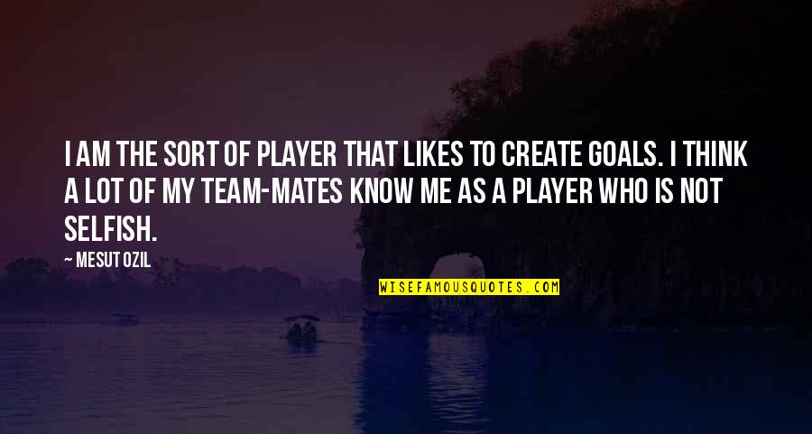Fangsmith Quotes By Mesut Ozil: I am the sort of player that likes