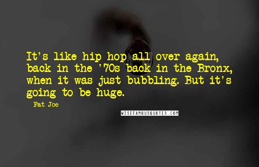 Fat Joe quotes: It's like hip hop all over again, back in the '70s back in the Bronx, when it was just bubbling. But it's going to be huge.