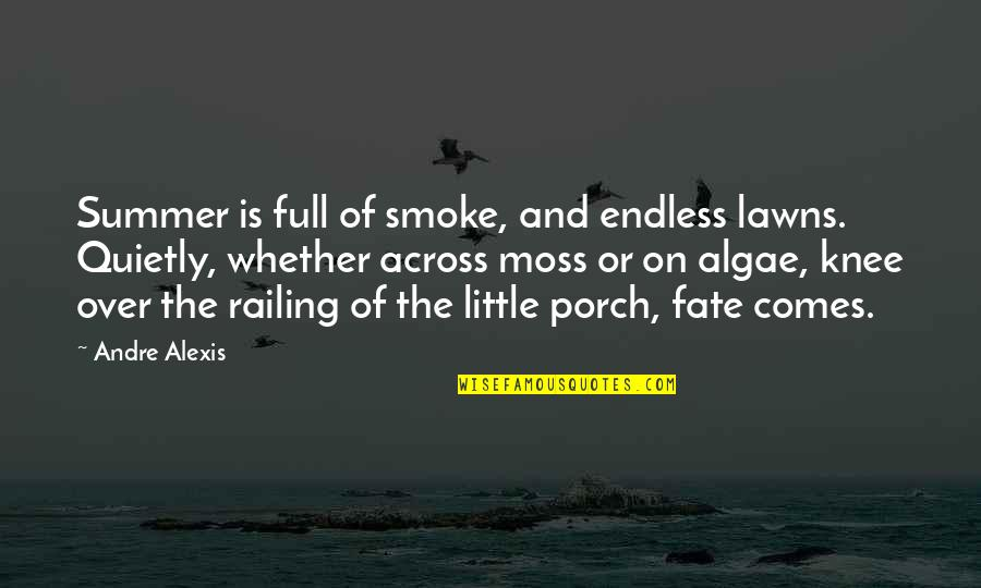 Fate Quotes By Andre Alexis: Summer is full of smoke, and endless lawns.