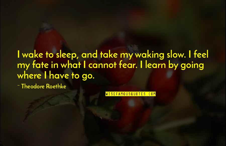Fate Quotes By Theodore Roethke: I wake to sleep, and take my waking