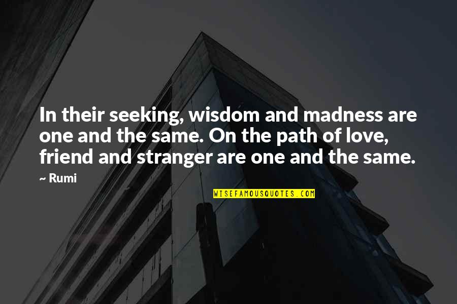 Fatih Seferagic Quotes By Rumi: In their seeking, wisdom and madness are one