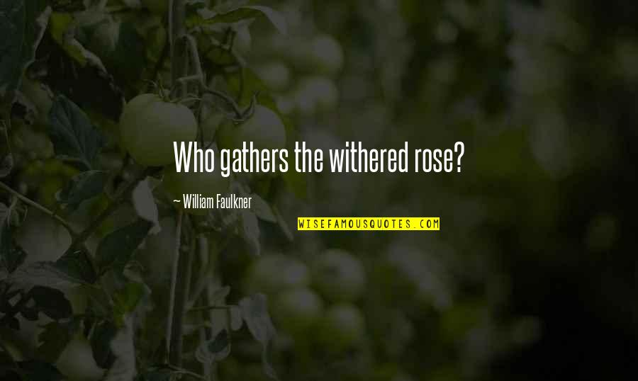 Faulkner William Quotes By William Faulkner: Who gathers the withered rose?