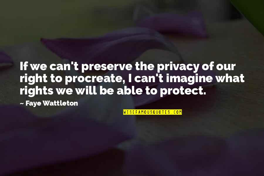 Faye's Quotes By Faye Wattleton: If we can't preserve the privacy of our
