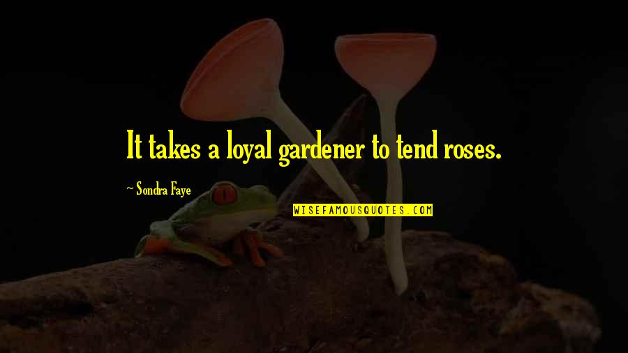 Faye's Quotes By Sondra Faye: It takes a loyal gardener to tend roses.