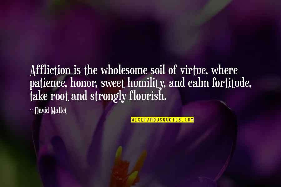 Fb Creeper Quotes By David Mallet: Affliction is the wholesome soil of virtue, where