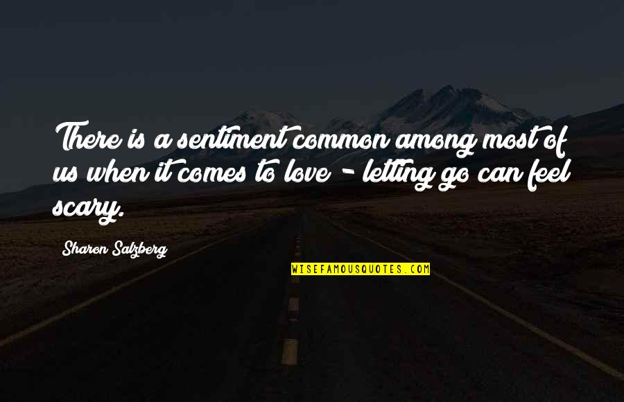 Fear Over Love Quotes By Sharon Salzberg: There is a sentiment common among most of