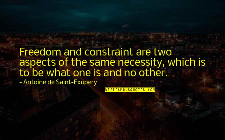 Feed Mira Grant Quotes By Antoine De Saint-Exupery: Freedom and constraint are two aspects of the