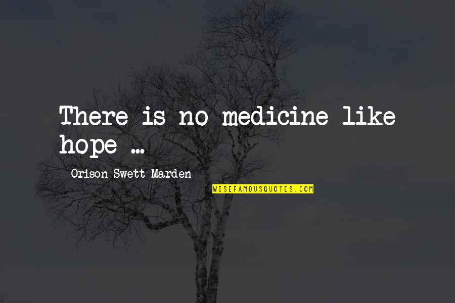 Feeling Invisible To The Guy You Like Quotes By Orison Swett Marden: There is no medicine like hope ...