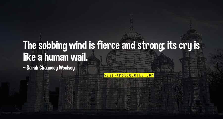 Feeling Like You're Missing Something Quotes By Sarah Chauncey Woolsey: The sobbing wind is fierce and strong; its