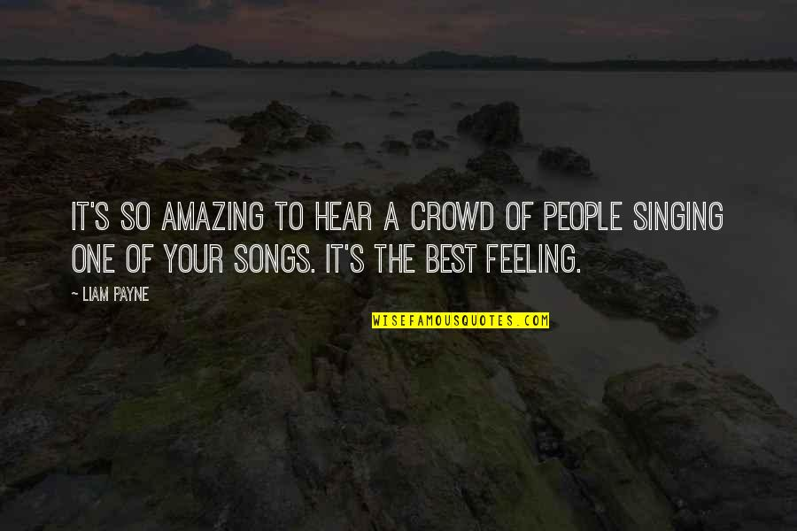 Feeling The Best Quotes By Liam Payne: It's so amazing to hear a crowd of