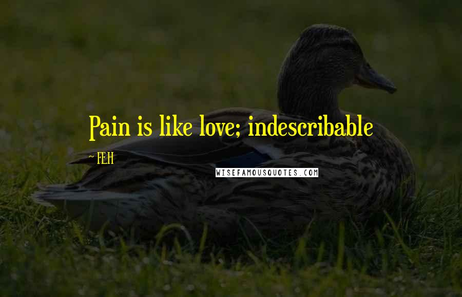 FEH quotes: Pain is like love; indescribable