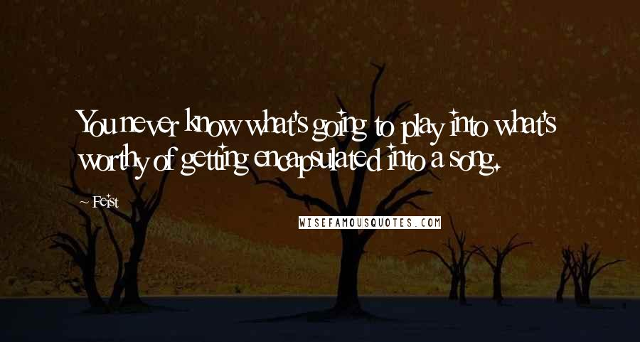 Feist quotes: You never know what's going to play into what's worthy of getting encapsulated into a song.