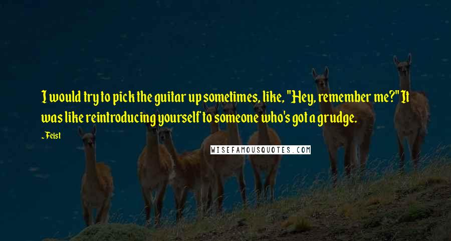 """Feist quotes: I would try to pick the guitar up sometimes, like, """"Hey, remember me?"""" It was like reintroducing yourself to someone who's got a grudge."""