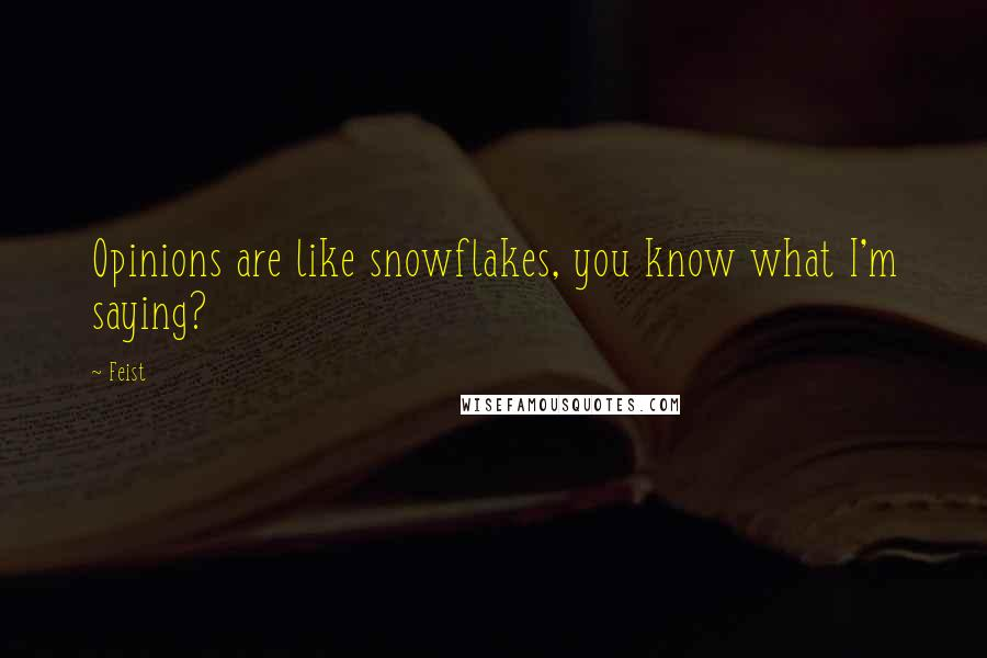 Feist quotes: Opinions are like snowflakes, you know what I'm saying?