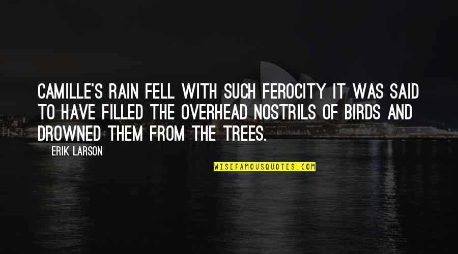 Fell's Quotes By Erik Larson: Camille's rain fell with such ferocity it was
