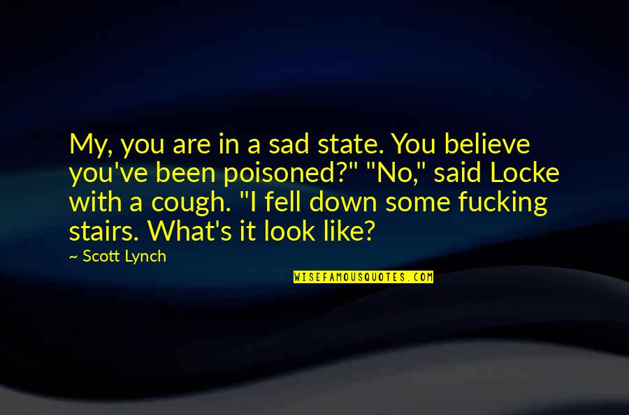 Fell's Quotes By Scott Lynch: My, you are in a sad state. You