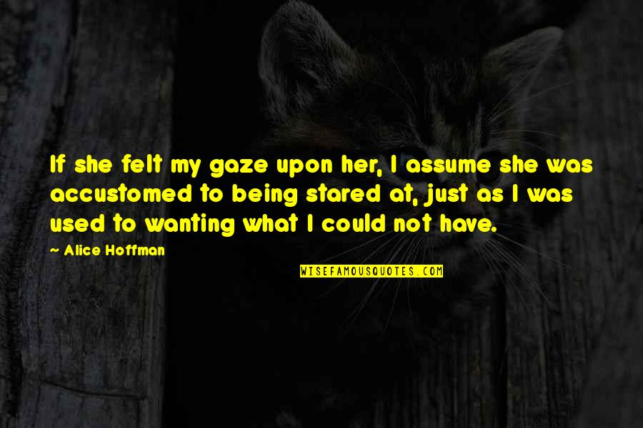 Felt Used Quotes By Alice Hoffman: If she felt my gaze upon her, I