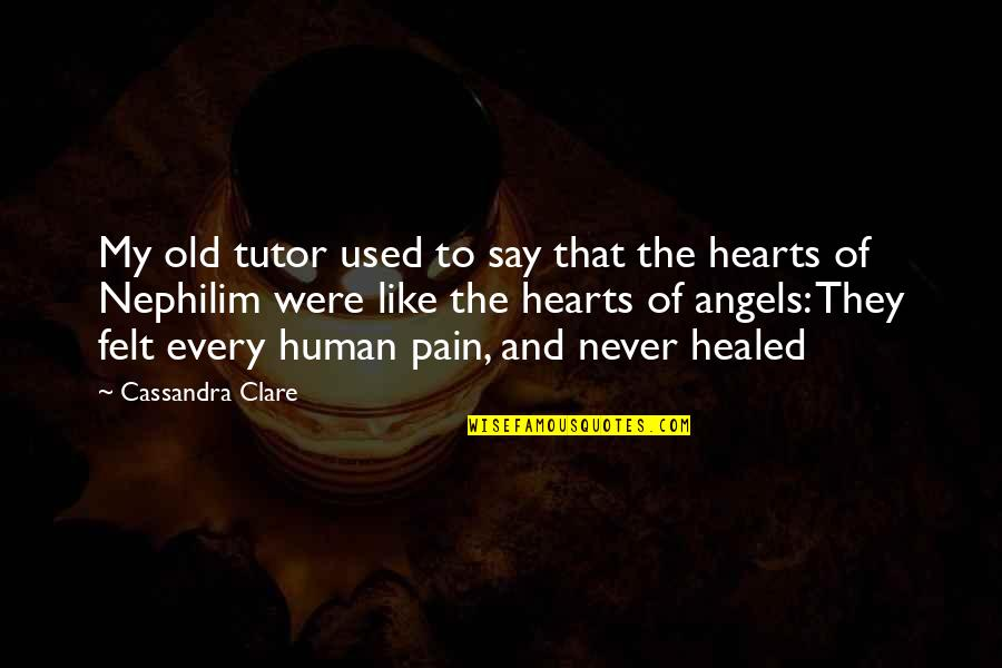 Felt Used Quotes By Cassandra Clare: My old tutor used to say that the