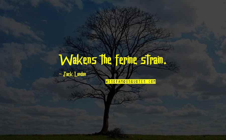 Ferine Quotes By Jack London: Wakens the ferine strain.